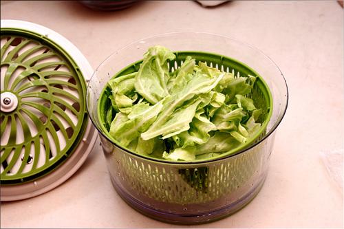 saladspin05.jpg