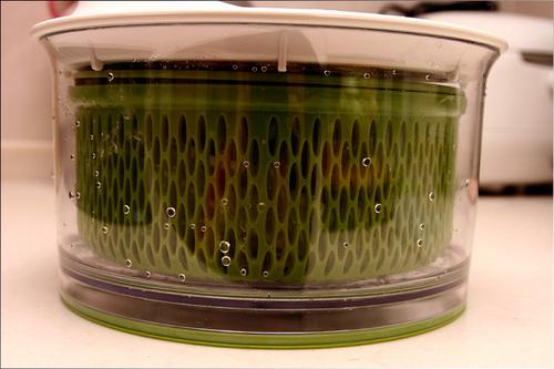 saladspin06.jpg