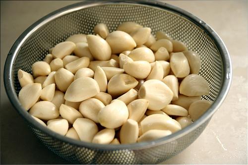 garlic04.jpg