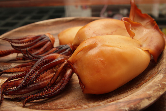 squid01.jpg