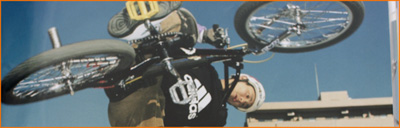 1999_adidas_thumb.jpg