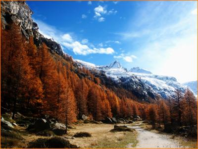 mountaindesktop.jpg