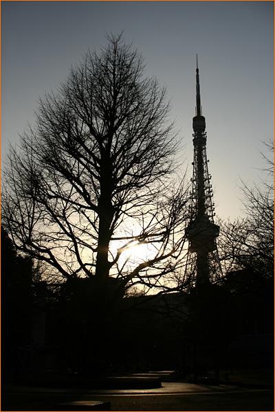 tokyotowerpic.jpg